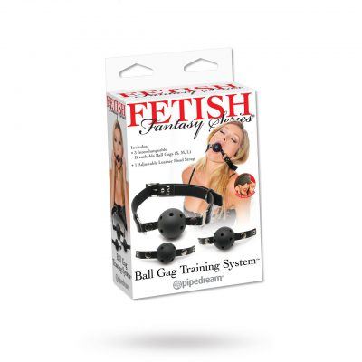 Ball Gag Training System
