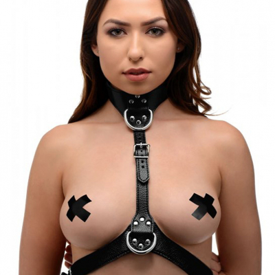 Strict: Female Chest Harness